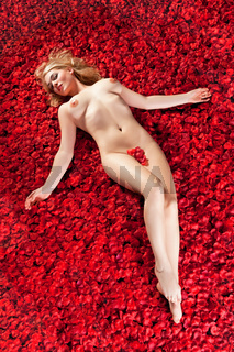 woman on a bed of rose petals