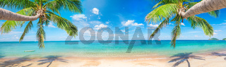 panorama of tropical beach with coconut palm trees