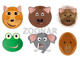 Various Animal Face Cartoon Illustrations