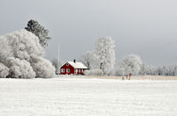 Red cottage in winter