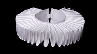 white ruff or ruffled collar isolated on black background