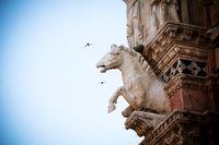 Horse statue in Siena
