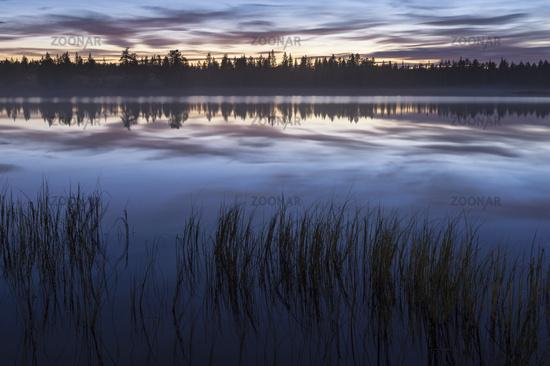 evening mood beside a lake, Lapland, Sweden