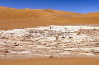 Hiddenvlei, Namibia