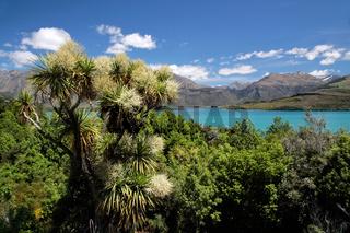 Lake Wakatipu between Queentown and Glenorchy