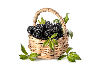 ripe blackberries with leaves on a white background with soft shadow