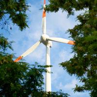 Rotor blades of wind turbine seen through gap between trees