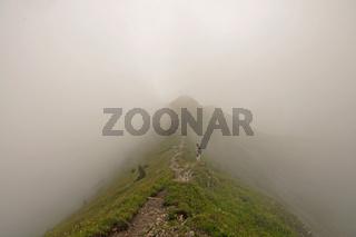 Wanderweg im Nebel, vom Fellhorn zum Söllereck, Allgäuer Alpen, Bayern, Deutschland, Europa