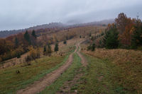 Hazy and overcast early morning in autumn Carpathian Mountains and dirty countryside path, Ukraine.