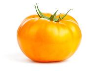 Yellow Tomato Isolated On White Background