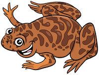 xenopus animal character cartoon illustration