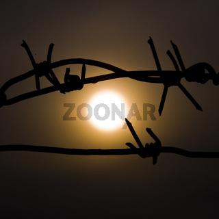 The sun in prison