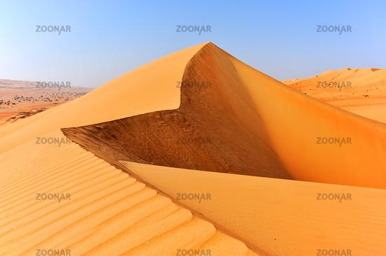 Desert Wahiba Sands