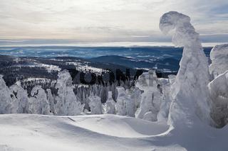 Winter im Bayerischen Wald