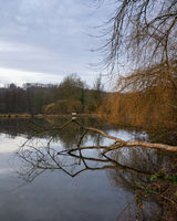 Fishpond, Bergisches Land, Germany