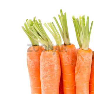 Heap of carrots