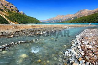 Glacial Waters Flow to Peyto Lake