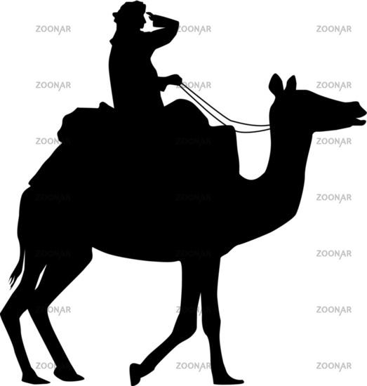 Bedouin camel riders
