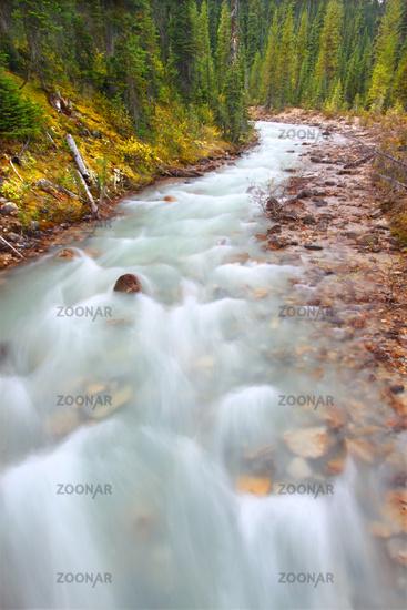 Little Yoho River Rapids Canada