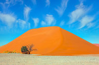 Paintings of sand dunes