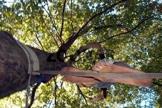 slacklining or walking on a tightrope