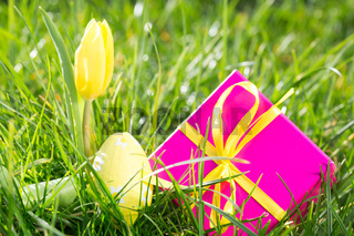 Pink gift box with easter egg and yellow tulip