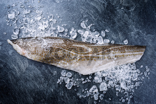 Raw Norwegian skrei cod fish filet with skin offered as top view with ice on a black board with copy space