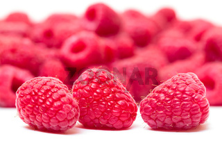 Ripe Berry Red Raspberry