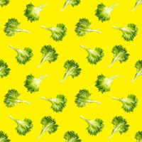 seamless pattern from lettuce green leaves salad. frillice salad isolated on yellow. iceberg salad leaf flat lay