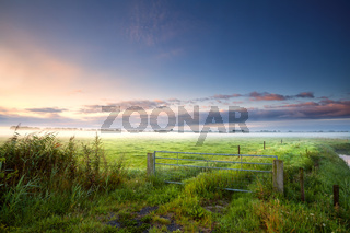 fense on Dutch farmland in misty morning