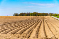 View of the plowed fields in the spring for growing