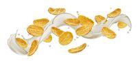 Corn flakes with milk splash isolated on white background