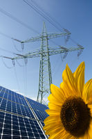 Solar modules, sunflower and power pole with cables