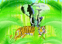 Tropical jungle with elephant and tiger, illustration