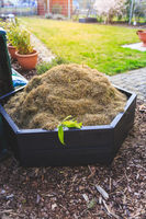 Gardening - composter with lawn cut and hay.  Bed with mulch and green lawn.