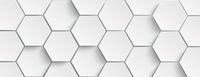 White Hexagon Structure Background Header