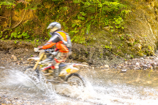 Sunny Summer Forest and Enduro Racing