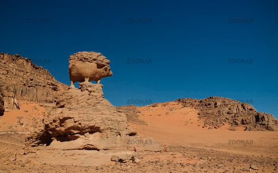 Abstract Rock formation aka pig or hedgehog at Tamezguida, Tassili nAjjer national park, Algeria