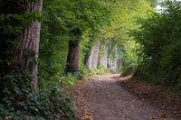 Landscape 002. Windebyer Noor. Germany