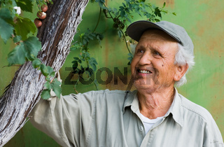 happy senior looking at tree