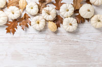 Happy thanksgiving - background with white pumpkins and autumn leaves on white