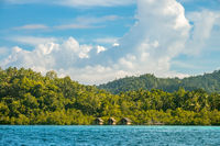 Tropical Shore With Dense Rainforest and Three Huts on Stilts in the Water
