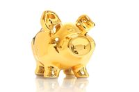 Golden pig isolated over white. Successful investments.