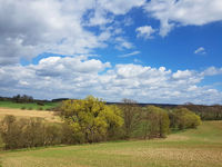 Landscape near the Eco-Village Brodowin in Brandenburg state in spring