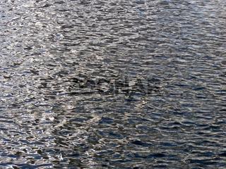 Wasser I