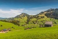 Green, mountainous landscape in Toggenburg, Canton St. Gallen, Switzerland