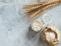 Wheat sourdough starter, top view, copy space
