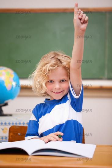 Portrait of a schoolboy raising his hand