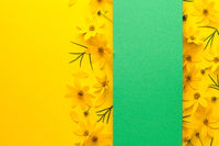 Flowers layout with banner on paper background