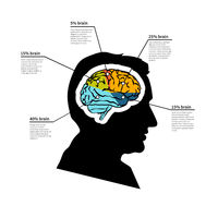 Man brain potential, bright detailed infographic with text place on white
